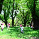幼稚園と保育園どっちが良い?認定こども園とは?費用など徹底比較!