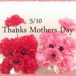【2015年の母の日】人気ギフト・プレゼントは何?<花束、お菓子>