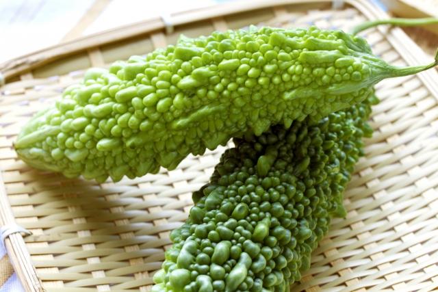 夏の野菜といえばこれ!上手なゴーヤの育て方<栽培・レシピ>