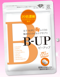 bup_01