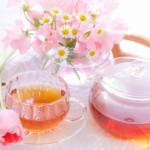 健康茶は種類によって効果効能が違う?高血圧におすすめの健康茶3選