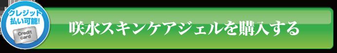suizenji_09