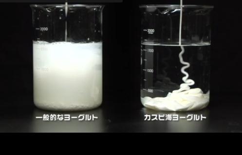 善玉菌のチカラの口コミは効果なし?下痢やアトピーが改善するのか成分徹底解析
