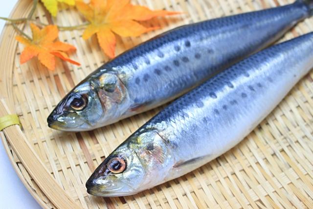 魚油サプリおすすめランキング5選!脂肪酸などの成分が健康によい?