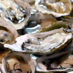 牡蠣の亜鉛含有量は?サプリに効果はある?しっかり吸収される?