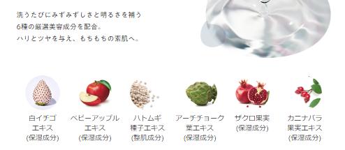 6種の成分